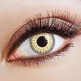 aricona Farblinsen farbige Kontaktlinsen mit Stärke gold graue 12 Monatslinsen | Jahreslinsen für dein Augen Make up | bunte Augenlinsen natürlich farbig | - 4,5 Dioptrien