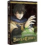 Black Clover episodios 14 a 27 (Saga Completa de la Mazmorra y el Ataque a la capital) [DVD]