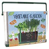 Childrens Grow Your Own Vegatable Garden In Transparent Case