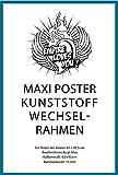 Empire Merchandising GmbH, 675002, Cornici di Ricambio in plastica per Poster Grandi, Profilo 15 mm, 62 x 93 cm, con Vetro Acrilico, Colore: Turchese
