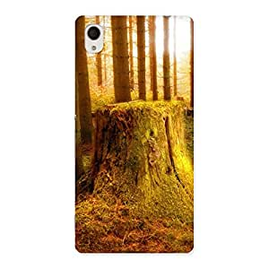 Delighted Tree Trunk Print Back Case Cover for Xperia M4 Aqua
