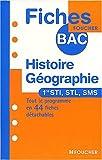 HISTOIRE GEOGRAPHIE 1E STI/STL/SMS (Ancienne édition)