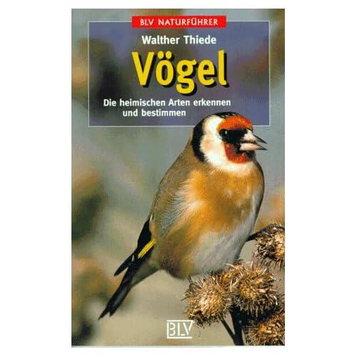 Außergewöhnlich PDF] Vögel: Die heimischen Arten erkennen und bestimmen KOSTENLOS #QN_62
