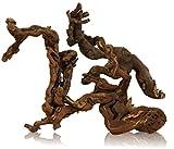 naturbelassene Vino Viña para terrarios y acuarios, madera de raíz, raíz–Aprox. 30hasta 40cm