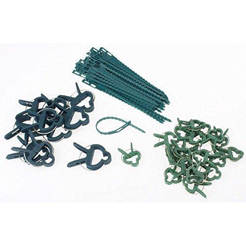 pianta-graffette-e-pianta-di-collegamento-set-grande-e-piccolo-piante-della-clip-filo-di-legatura-pi