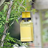 The Buzz Fly Catcher (Super Effective, Refillable Insect Attractant for Outdoor Use, Covers up to 10 m Radius) - Twin Pack
