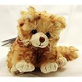 Little Loke gato Barbara Bukowski Teddy (Surtido)