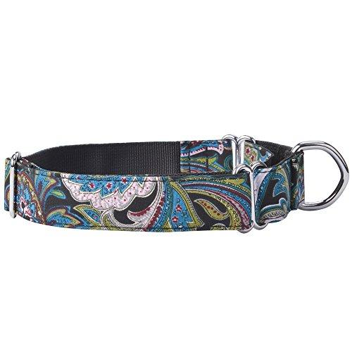 EXPAWLORER - Collar martingale (tipo gamarra) de nailon de alta resistencia para perros.