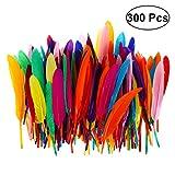 toymytoy 300Stück Colorful Nature Feder für DIY Craft Hochzeit Home Party Decor (zufällige Farbe)