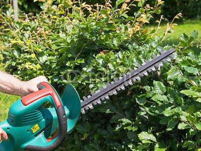 """Alu-Dibond-Bild 40 x 30 cm: \""""Gartenarbeit - Hecke schneiden - Heckenschere\"""", Bild auf Alu-Dibond"""