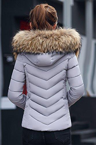 Les Femmes À L'hiver Matelassé Occasionnel De Courte Parka Extérieur De La Tenue De Poils Grey