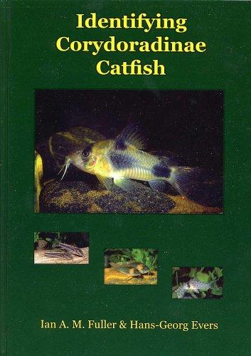 Identifying Corydoradinae Catfish -