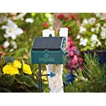 Irrigatia SOL-C12 Unique Solar Powered Weather Responsive Automatic Watering System, Green, 7 x 24 x 24 cm 8