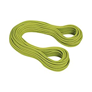 Mammut Infinity Dry 9,5 mm Dry pappel/lime green Lg 50