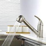 Homelody küchenarmatur mit ausziehbarem brause Wasserhahn Küche Armatur Spültischarmatur Spülbeckenarmatur Spültisch Mischbatterie Spülbecken Einhebelmischer