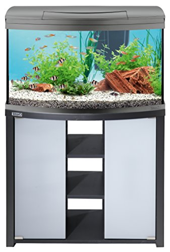 Tetra AquaArt Evolution Line LED Aquarium-Komplett-Set 100 Liter anthrazit - 6