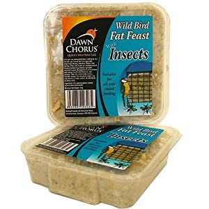 Dawn Chorus Insect Fat Feast For Wild Birds (12 pack)