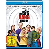 The Big Bang Theory - Die komplette 9. Staffel