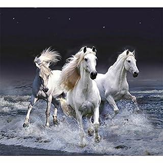 Awakingdemi 5D DIY Diamond Painting Horse Without a Stop Cross Stitch Wall Stickers Rhinestone Painting Home Decor by Awakingdemi
