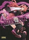 Akame Ga Kill! 6