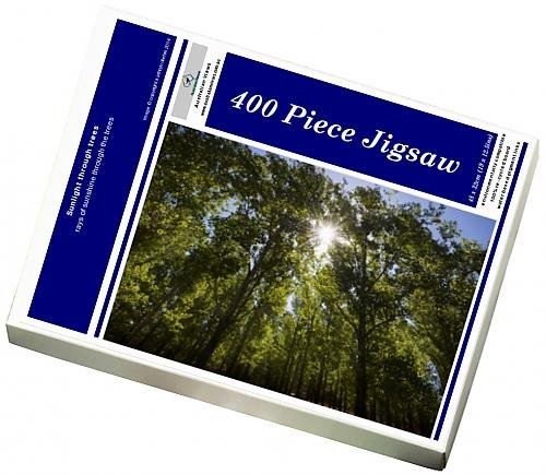 photo-jigsaw-puzzle-of-sunlight-through-trees