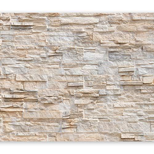 murando - Fototapete Steinwand 400x280 cm - Vlies Tapete - Moderne Wanddeko - Design Tapete - Wandtapete - Wand Dekoration - Steinoptik Stein 3d Effekt f-B-0018-a-b