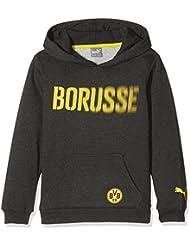 Puma BVB Graphic Pullover à capuche pour homme