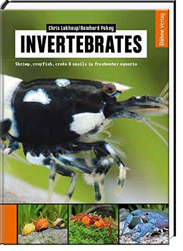 Invertebrates: Shrimp, crayfish, crabs & snails in freshwater aquaria