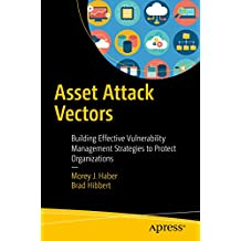 Asset Attack Vectors: Building Effective Vulnerability Management Strategies to Protect Organizations (English Edition)