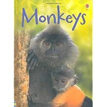 Monkeys (Beginners Series)