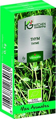 KG BY VILMORIN 8200011 Jardinières Thym Bio Vert 7 x 3 x 2 cm