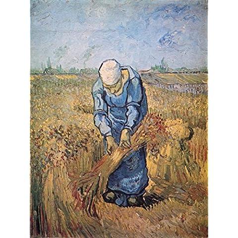 Vincent Van Gogh - Woman Binding Sheaves, 1889 Stampa D'Arte (107 x 80cm)