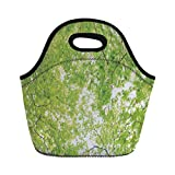 Portable Lunch Bag,Leaves,Fresh Summer Branches Leaves of A Tree Epic View from The Ground Growth Botanical Picture,Green,for Kids Adult Thermal Insulated Tote Bags