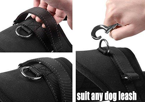 Lifepul No-Pull-Hundegeschirr Haustier sicher Kontrolle Körper gepolsterte soft geschirr mit Schnellverschlüssen Dog Sicherheitsgurt ,XL Size - 3