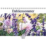 Dahliensommer (Tischkalender 2019 DIN A5 quer): Dahlien, die begeistern (Monatskalender, 14 Seiten ) (CALVENDO Natur)