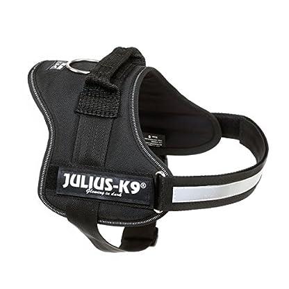 Julius-K9, 162P2, Powerharness, Size: 2, Black 2