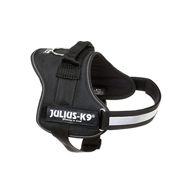 Julius-K9, 162P2, Powerharness, Size: 2, Black 2