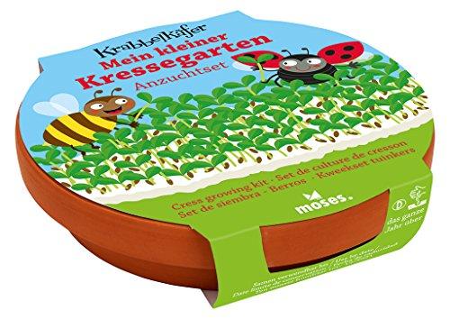 Moses. 16097 Krabbelkäfer Mein Kleiner Kressegarten | Kresse Anzucht-Set mit Tonschale | Für Kinder