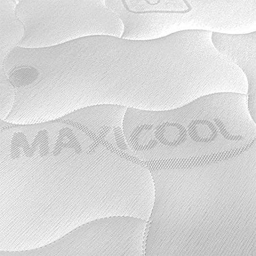 Baldiflex Topper Correttore Materasso Matrimoniale in Memory Foam Fresh Wave, Fodera in Maxicool Sfoderabile, fresco, traspirante, ergonomico, antiacaro, 160 x 190 cm h 6 cm miglior prezzo