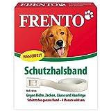 Frento Schutzhalsband für Hunde