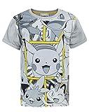 Pokemon Panels Boy's T-Shirt (13-14 Years)