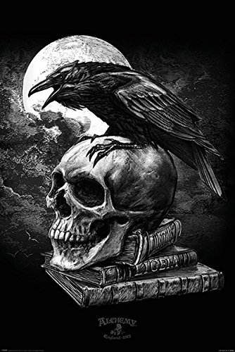 Alchemy Poster Poe's Raven (61cm x 91,5cm) + Ü-Poster (Game Over Poster)