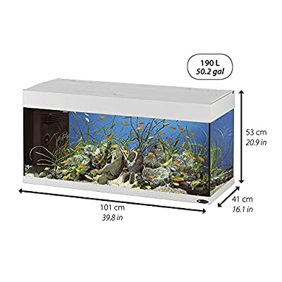 Ferplast 65036017 Aquarium, Maße: 101 x 41 x 53 cm, 190 L, schwarz