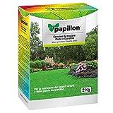 Papillon 8025021 Abono Grano Césped/Jardín, Multi, 18x24x9 cm
