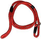 Rosewood 03701 geflochtene Hundeleine, rot/schwarz