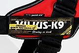 Julius K9 16222-IDC-P IDC-Powergeschirr mit Seitenringen Gr. 2, schwarz