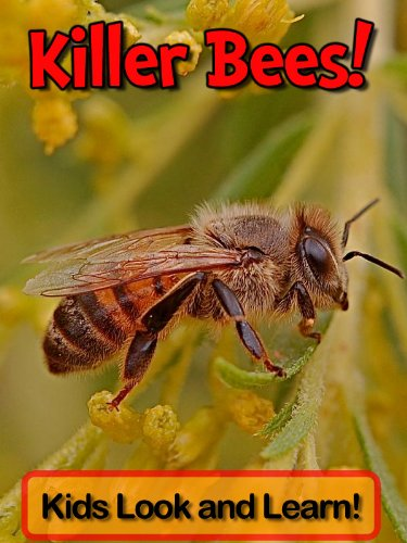 Killer Bees! Learn About Killer Bees and Enjoy Colorful Pictures - Look and Learn! (50+ Photos of Killer Bees) (English Edition) -