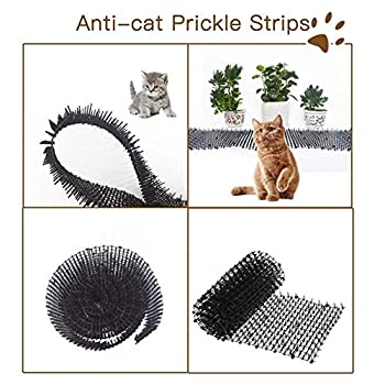 Filet De Protection Anti-chat Épine Protection Végétale Filet Mur De Jardin Anti-escalade Sécurité Clou Anti-chat Épine Cat Chat Clôture