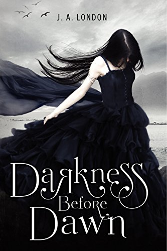 Darkness Before Dawn (Darkness Before Dawn Trilogy Book 1) (English Edition)