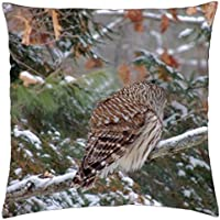 Camera Shy Owl - Throw Pillow Cover Case (18